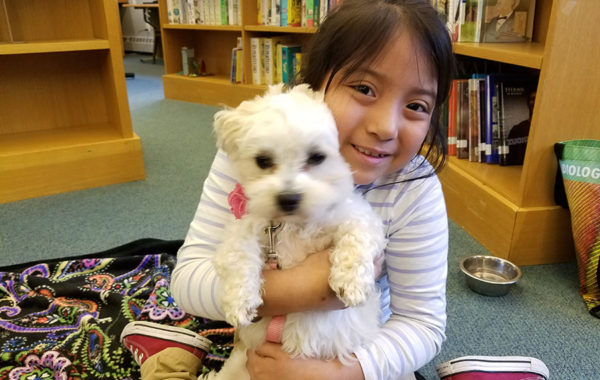 Reading to Dogs Program at Mill Neck