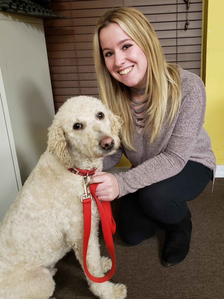 therapy dogs near me
